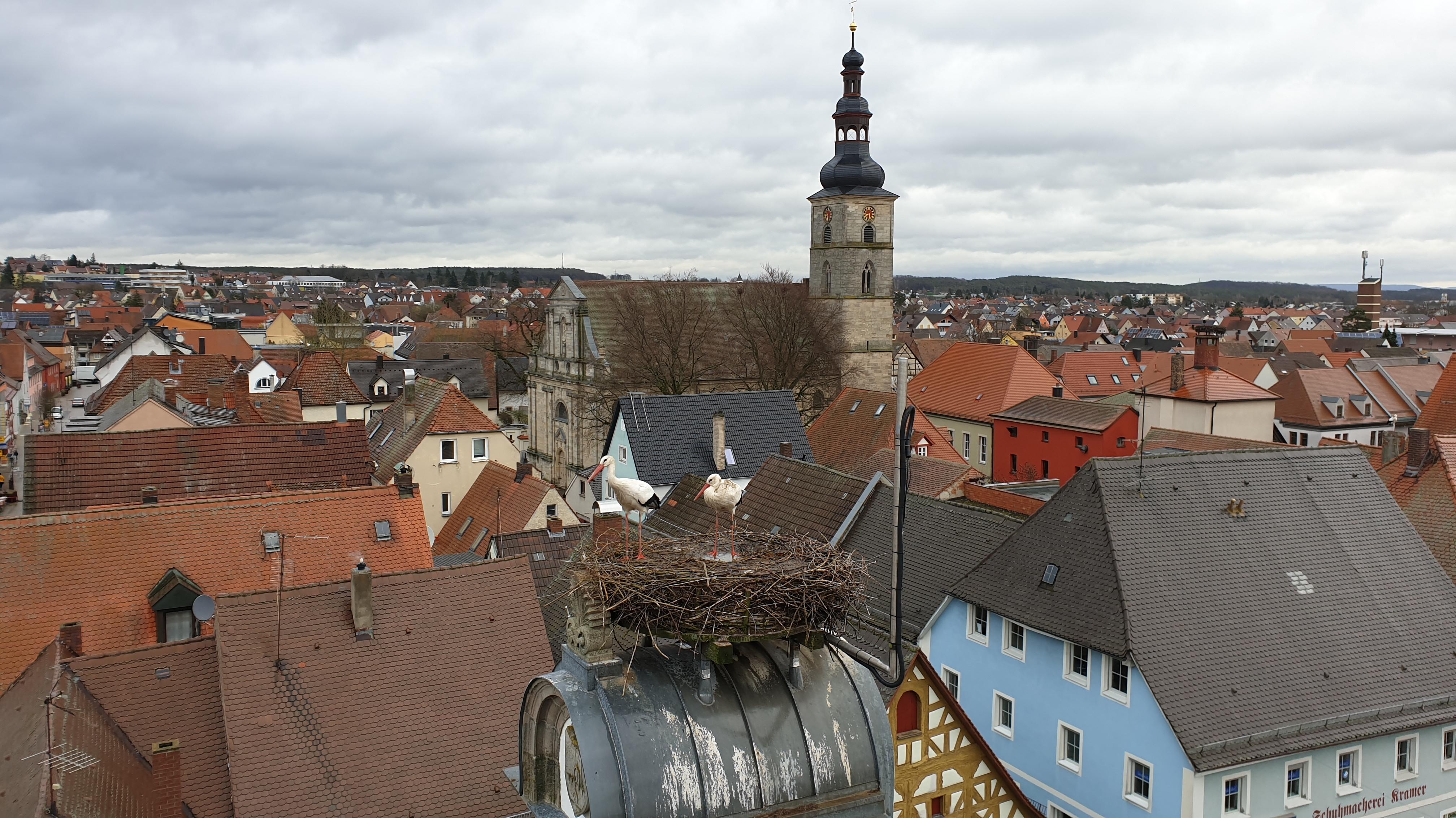 https://storchennest-hoechstadt.de/sites/default/files/storch.jpg?1341138731