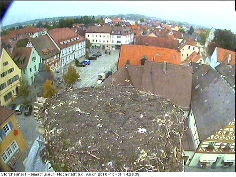 Höchstadt an der Aisch Stork Nest Cam